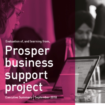 Prosper business support project evaluation