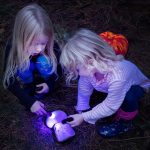 Two small girls crouched on the ground shining torches at two stones
