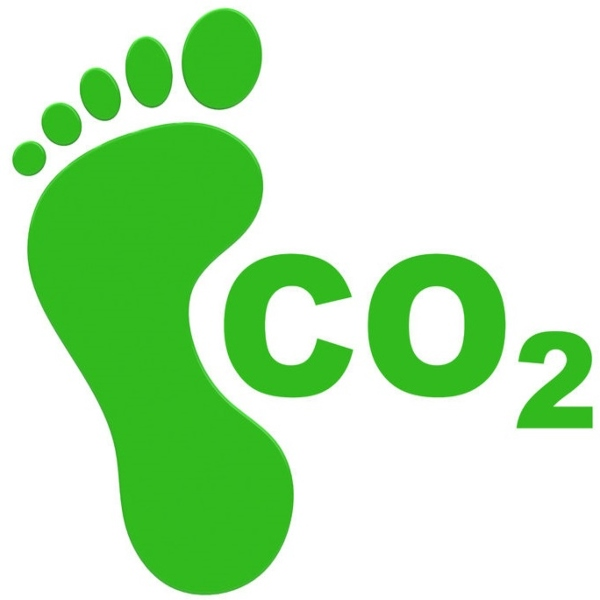Sustainable web design: how to reduce your website's carbon footprint