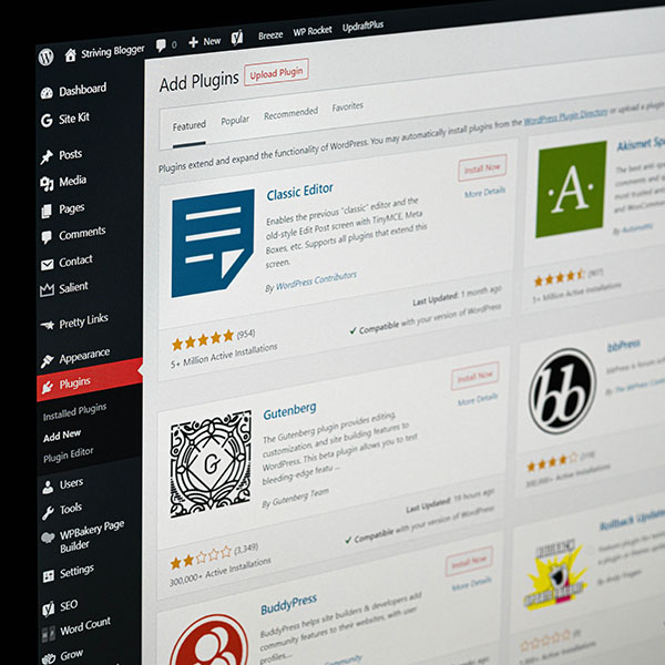 How to expand the functionality of your WordPress website