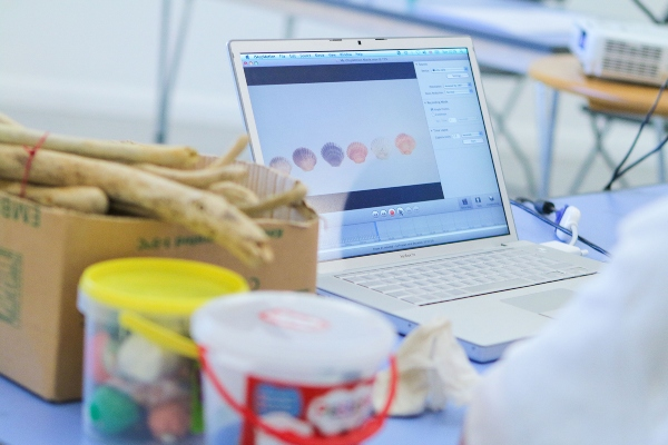 An open laptop surrounded by crafting material incontainers and a large cardboard box of twigs.