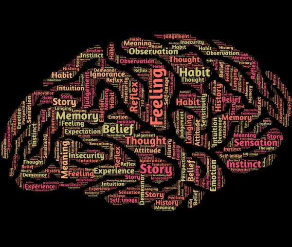 An outline of a brain full of words: judgement, attitude, feeling, belief